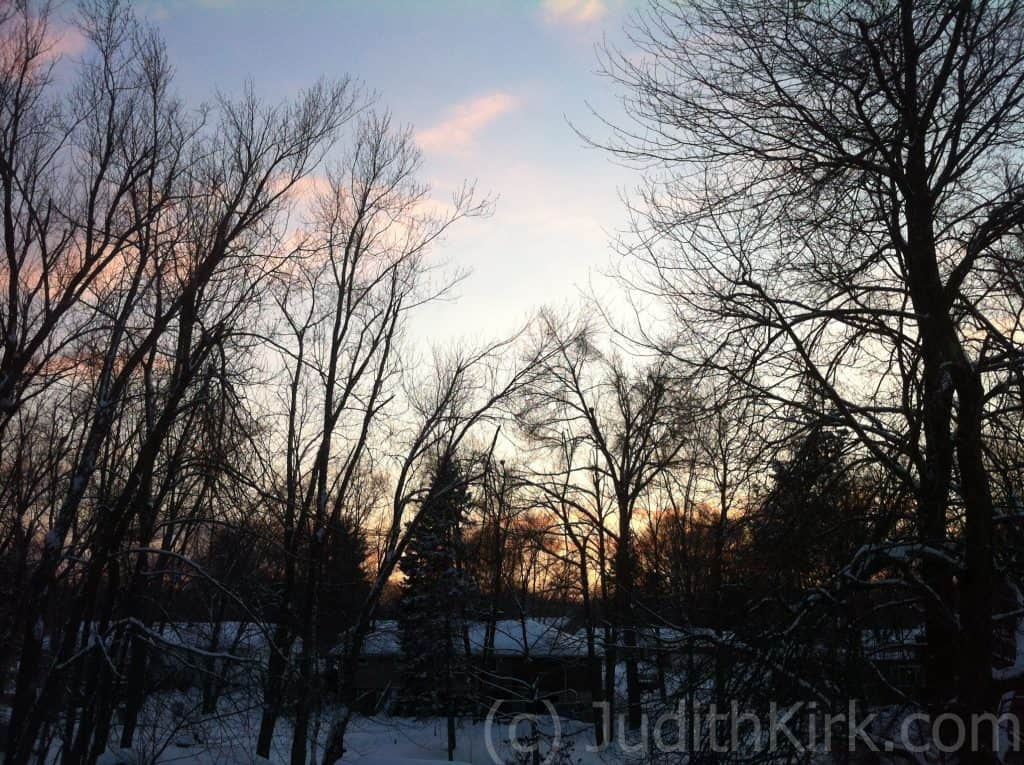 Blue winter sky with pink clouds behind the bear winter trees